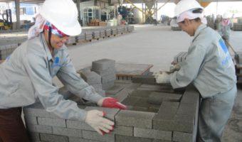 Hướng dẫn các bước sản xuất gạch không nung