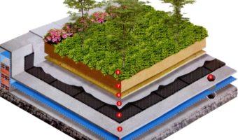Kỹ thuật thi công vườn trên mái