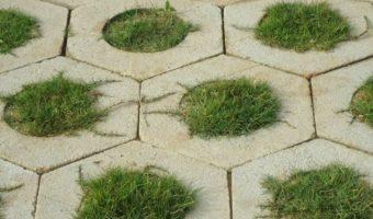Gạch trồng cỏ – Giải pháp hoàn hảo cho sân vườn nhà bạn