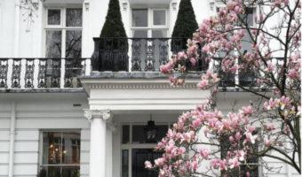 Cách phối màu đá ốp mặt tiền khiến ngôi nhà thêm thu hút
