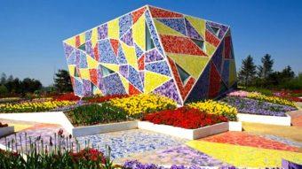 Bạn có thể làm gì với gạch mosaic gốm?