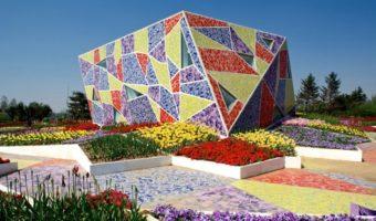 Gạch mosaic Hà Nội – loại gạch gốm làm nên tác phẩm nghệ thuật