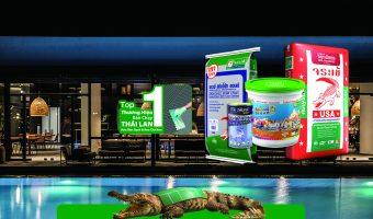 Keo dán gạch cá sấu – Lựa chọn số một của người Việt Nam