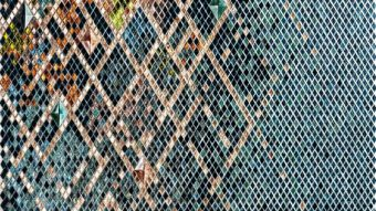 Nghệ thuật sử dụng gạch Mosaic tuyệt đẹp và độc đáo