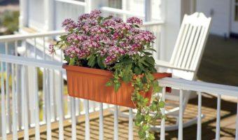Trang trí lan can ban công sinh động với chậu hoa kẹp nhiều màu sắc