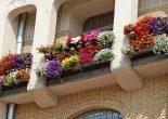 Trang trí lan can bằng hoa: bạn chọn cách nào?