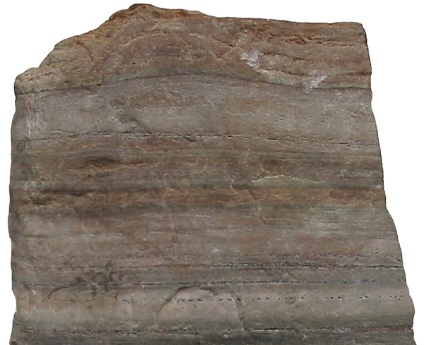 nhung-dieu-thu-vi-ve-da-marble-ma-co-the-ban-chua-biet-1