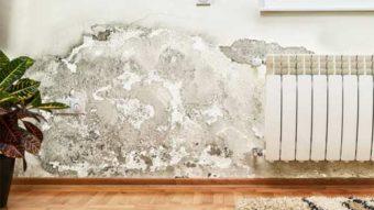 Khi nào cần phải sử dụng tấm ốp tường chống thấm?