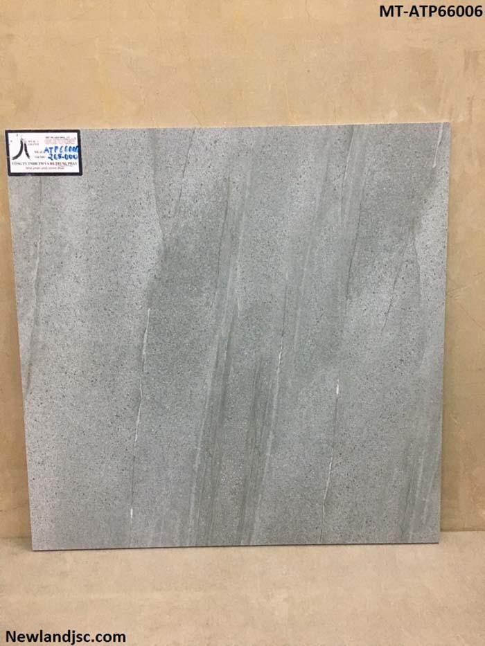 Gạch cao cấp KT 600x600mm MT-ATP66006